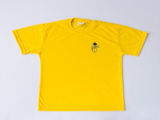 Camisetas Personalizadas Formatura Piqueri - Camiseta Personalizada Polo
